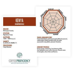 Coffee Proficiency KENIA KAMWANGI 250g